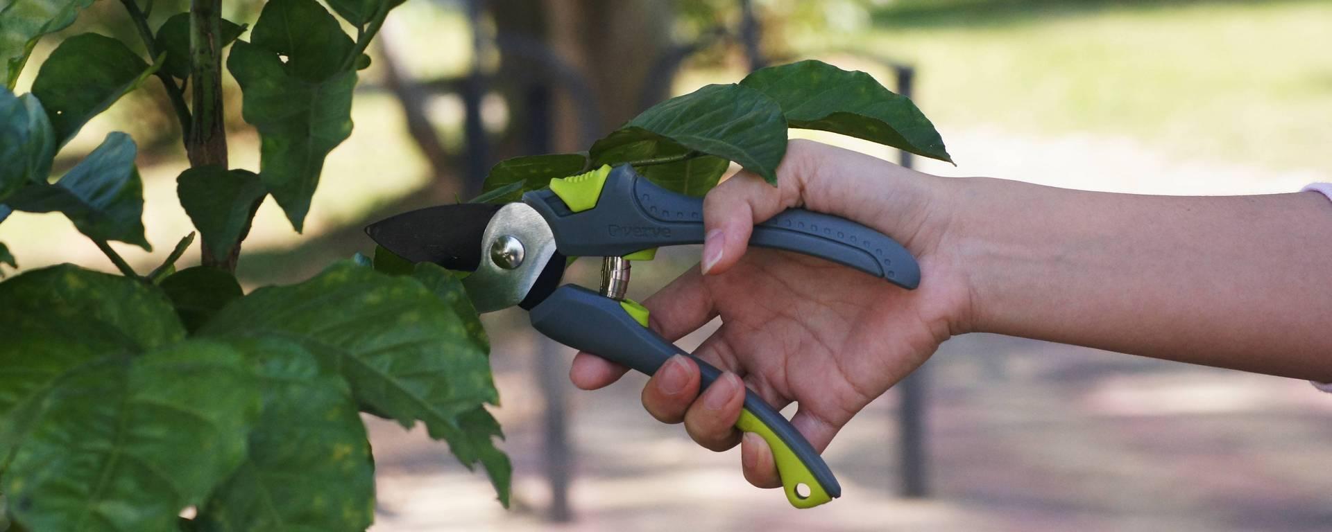Sistemul de irigare – un ajutor de nădejde în grădina ta